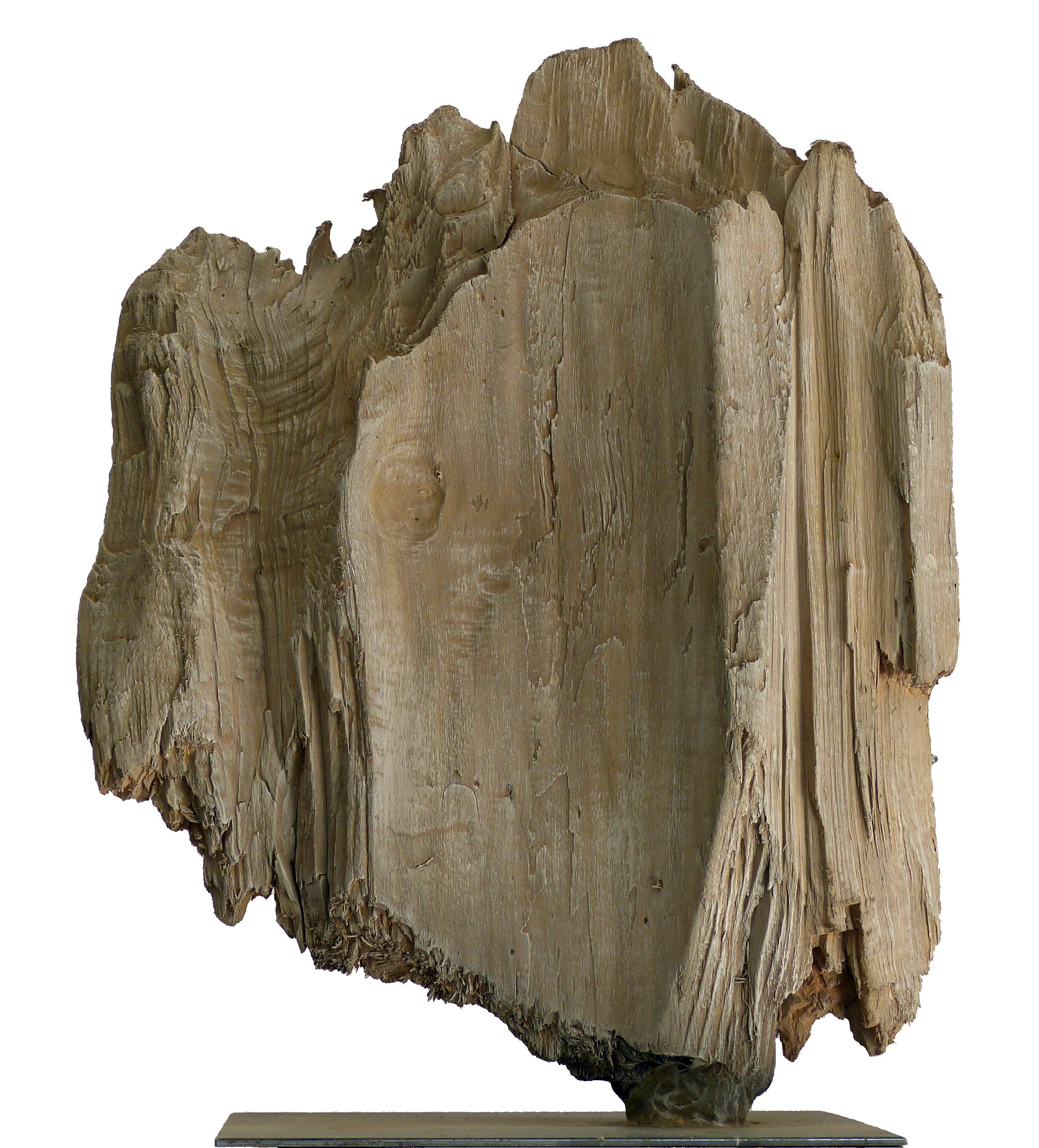 Chritian GLACE - Sculpture sur bois